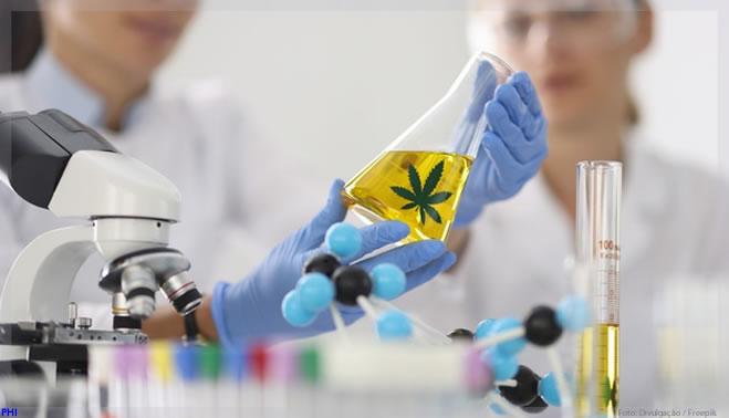 Idor e Entourage Phytolab vão realizar estudo do uso de Cannabis em doenças neurológicas