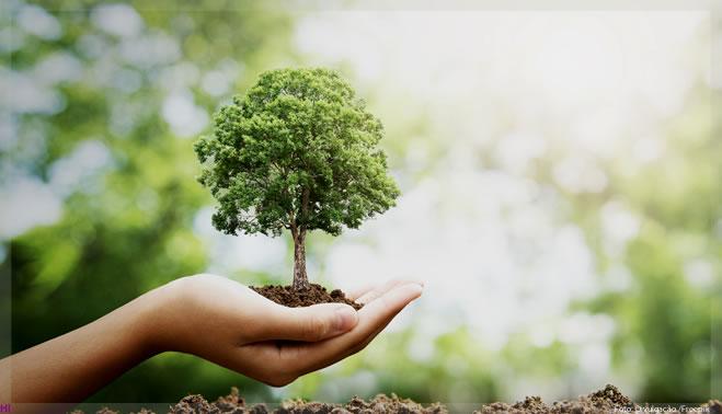 Eco Álcool 46 Ambipar ajuda empresas a atenderem aos pilares da sustentabilidade